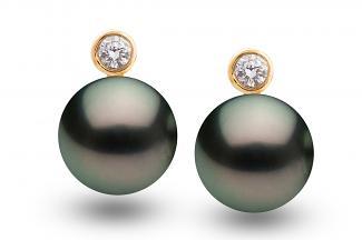 Black Freshwater Pearl Diamond Bezel Earrings 8.00 - 8.50mm