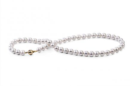 White Freshwater Pearl Necklace 8.00 - 8.50mm