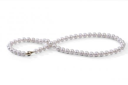 White Freshwater Pearl Necklace 7.00 - 7.50mm