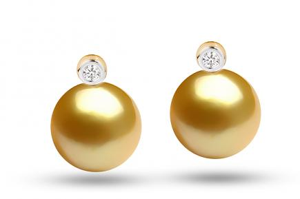 Golden South Sea Diana Pearl Earrings 11.00-11.50mm